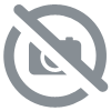 Oursons Or Haribo Sachet 10g